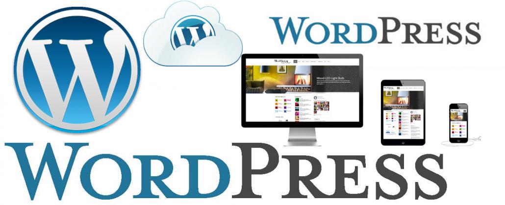 طراحی سایت وردپرس در کرمان