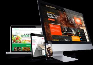 طراحی سایت ارزان در کرمان