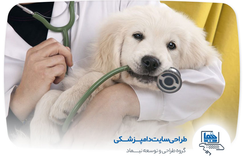 طراحی سایت دامپزشکی در کرمان